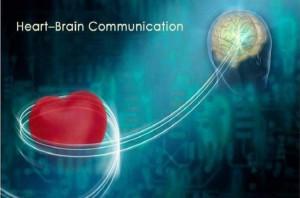 heart brain comunication
